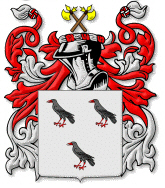 An example of a coat of arms, reputed to belong to a Johns